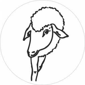 Adhésif tête animal - Brebis - noir fond blanc