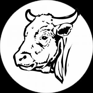 Adhésif tête animal - Bœuf - noir fond blanc