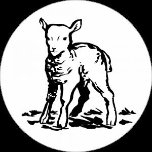 Adhésif tête animal - Agneau - noir fond blanc