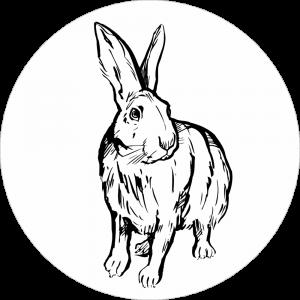 Adhésif tête animal - Lapin - noir fond blanc