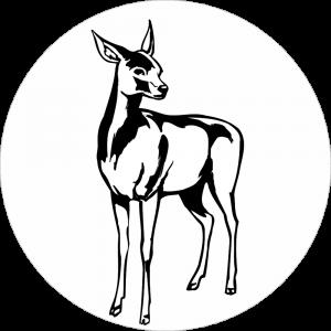 Adhésif tête animal - Biche - noir fond blanc