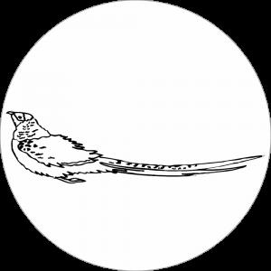Adhésif tête animal - Faisan - noir fond blanc