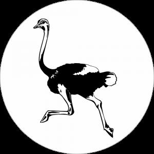 Adhésif tête animal - Autruche - noir fond blanc