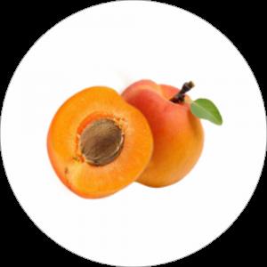 Adhésif Décor Fruit - Abricot - fond blanc