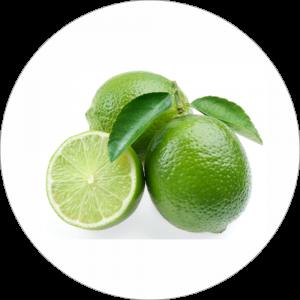Adhésif Décor Fruit - Citron Vert - fond blanc