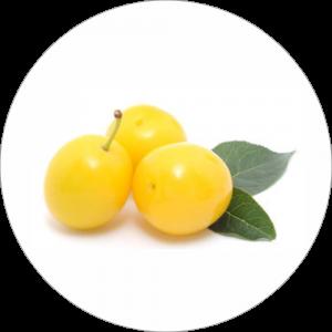 Adhésif Décor Fruit - Prune Jaune - fond blanc