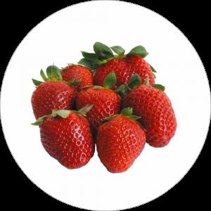 Adhésif Décor Fruit - Fraise - fond blanc