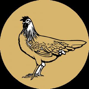 Adhésif Traçabilité Animale - Poulet fond Taupe