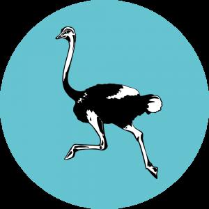 Adhésif Traçabilité Animale - Autruche fond Turquoise