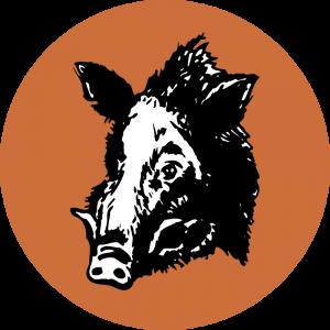 Adhésif Traçabilité Animale - Sanglier fond Marron