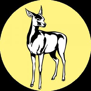 Adhésif Traçabilité Animale - Biche fond Jaune Clair