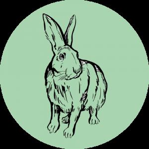 Adhésif Traçabilité Animale - Lapin fond Vert Clair