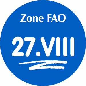 Adhésif Zone de pêche FAO - 27.VIII / blanc sur bleu