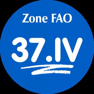 Adhésif Zone de pêche FAO - 37.IV / blanc sur bleu